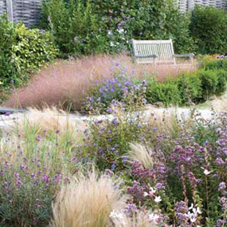 Catherine Thomas Garden Design