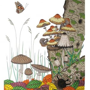 Francesca McLean Illustration for the Fisherton Mill Exhibitors Pages