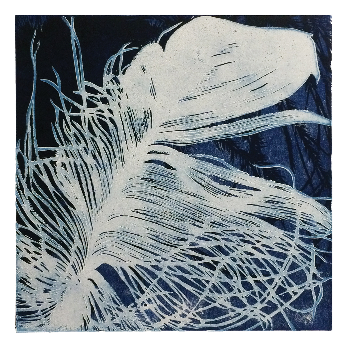 Gemma Dunn print of a feather