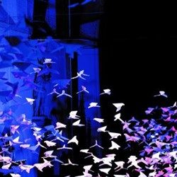Les Colombes installation at Salisbury Cathedral from 12th May 2018