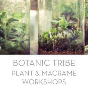 Botanic Tribe Pop Up Studio Workshops 2018 Image